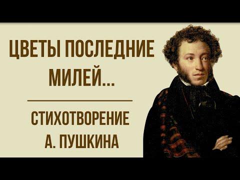 «Цветы последние милей» А. Пушкин. Анализ стихотворения