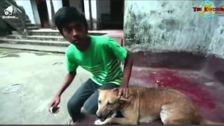 Download Video জমিদার স্ত্রী, কাজের ছেলের সাথে সেক্স video দেখুন HD MP3 3GP MP4