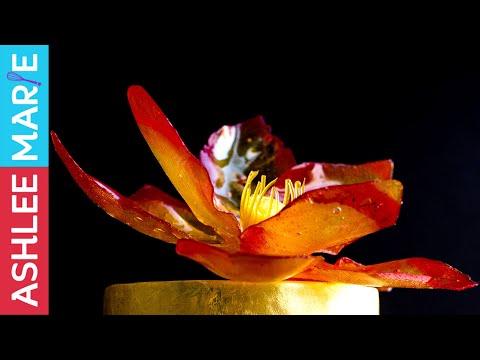 How to make a fire inspired isomalt lotus flower - Man
