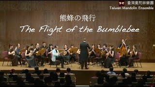 熊蜂の飛行 The Flight of the Bumblebee(N. Rimsky-Korsakov)大黃蜂的飛行 / 粂井謙三 & TW Mandolin Ensemble