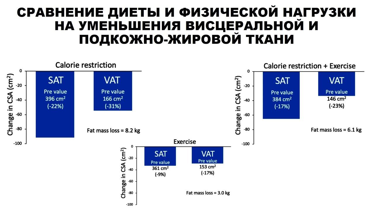 Сравнение диеты и физической нагрузки на уменьшения висцеральной и подкожно-жировой ткани
