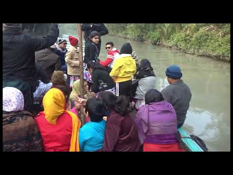 Sundarban, Mangrove forest and the  Royal Bengal tiger. Sundarbans is a UNESCO World Heritage Site.