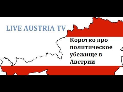 Коротко про политическое убежище в Австрии