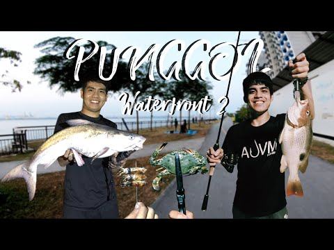 Punggol Waterfront 2: Crabbing, Scooping Squid & Fishing