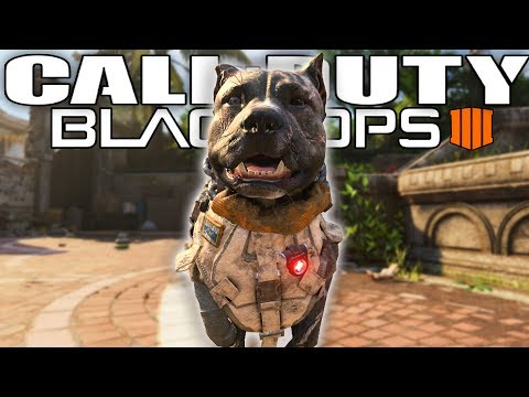 10 Things You Didn't Know About Call of Duty Black Ops 4! thumbnail