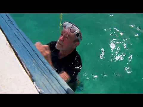 Finding Pieces Of 8 And Sunken Treasure On The 1733 Fleet, Florida Keys