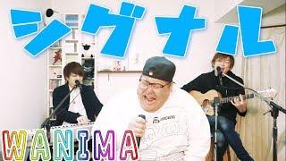 WANIMA /「シグナル」 covered by LambSoars & 恭一郎