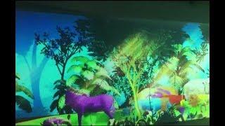 """Интерактивный аттракцион оживших рисунков животных """"Зоопарк Сафари 3D"""""""