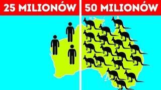 50 faktów o Australii, które łamią wszystkie stereotypy