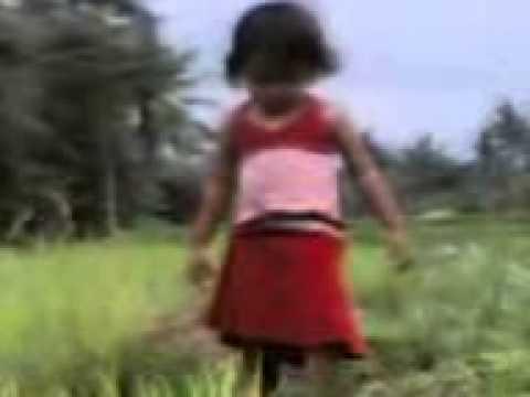 Video klip lagu pop  Nelayan by Iwan Fals