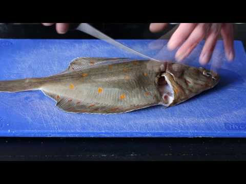 How To Fillet Plaice | Señor Buddha | Brighton Restaurant