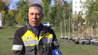 Благодаря КНПЗ в Куйбышевском районе Самары появилась новая аллея