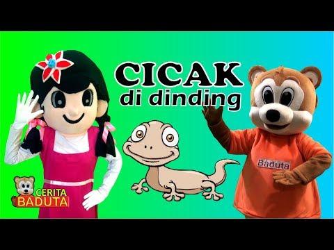 Cicak Cicak Di Dinding Lagu Anak Indonesia Populer