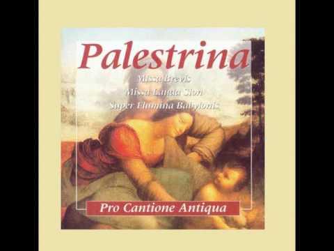 Palestrina    Missa Brevis Lauda Sion