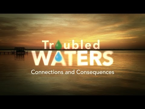 Troubled Waters: Connections and Consequences