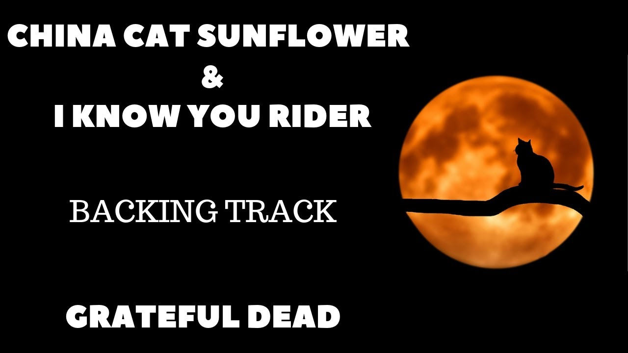 CHINA CAT SUNFLOWER   I KNOW YOU RIDER VIDEO by Grateful Dead ...