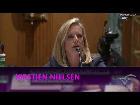 DHS Secretary Nielsen schools Democrat on following immigration law