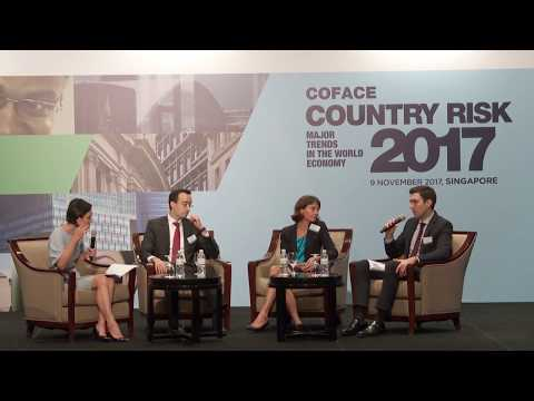 2017 Coface Country Risk Conference - Panel Discussion One