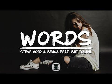 Steve Void & BEAUZ - Words (Lyrics Video) (feat. Bri Tolani)