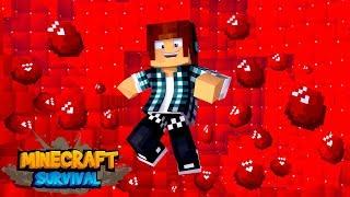 Minecraft Survival #18 - ENCONTREI RUBI NO MINECRAFT !!