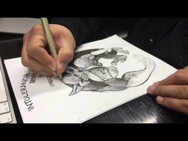 Dibujando con lápiz, plumilla, estilografos (Timelapse)