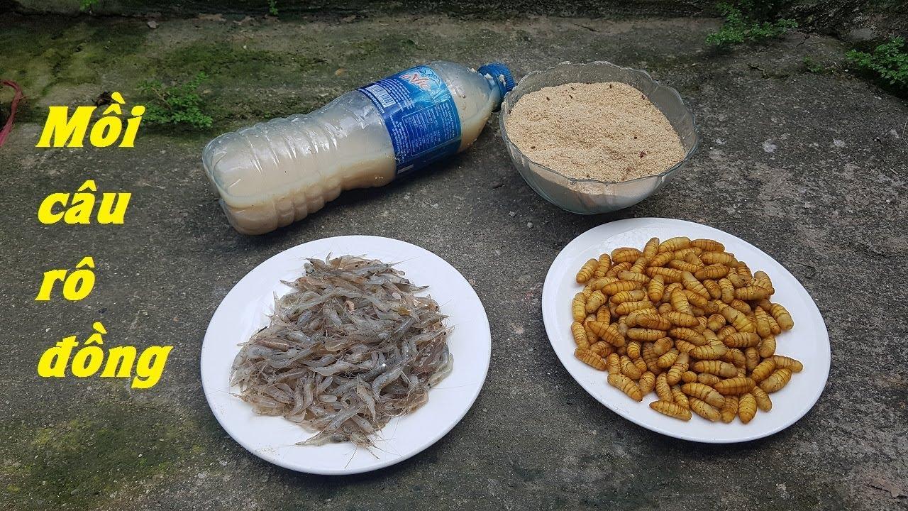 Hướng dẫn cách làm mồi câu cá rô đồng đơn giản cực nhậy
