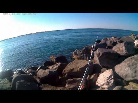 """St. Andrews State Park Panama City Beach Florida """"A Great Day to be Skunked!!"""