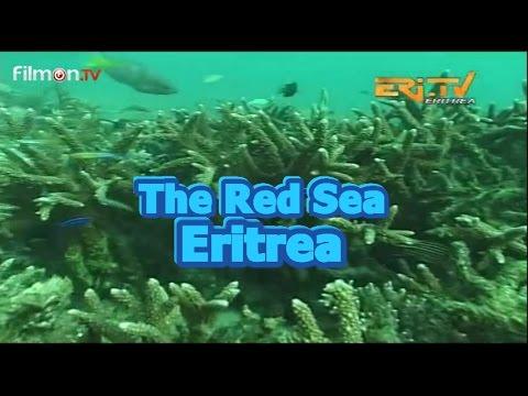 Red Sea Resources (Eritrea)