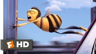 Bee Movie - Hitchhiking Honey Bee   Fandango Family