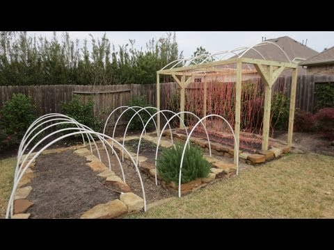 Garden row covers benefits and DIY instructions WorldNews