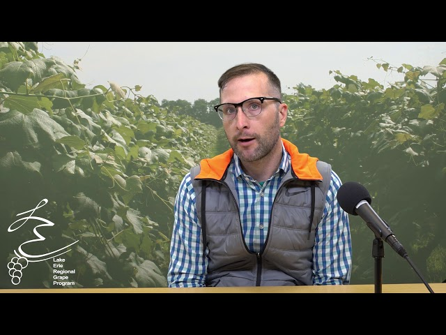 Vineyard Improvement Plan: Part I - LERGP Podcast #94