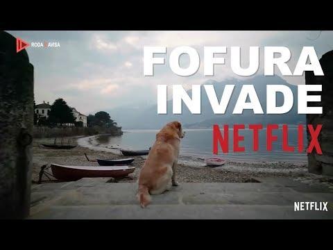 Fofura invade Netflix