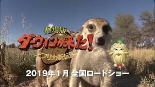 NHK総合テレビで2006年4月放送を開始した「ダー ウィンが来た!生きもの新伝説」。劇場版では500本以上ある放送アーカイブから、珠玉...