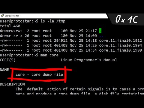 Linux signals and core dumps - bin 0x1C