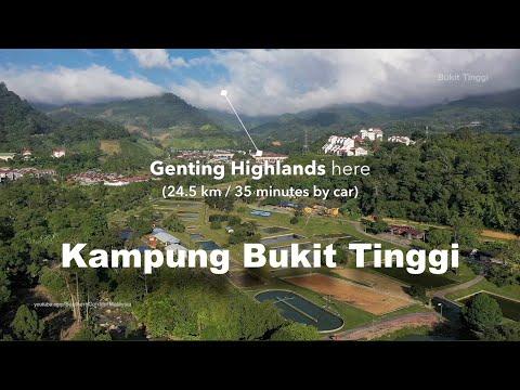 Kampung BUKIT TINGGI, it's so near to Genting Highlands!