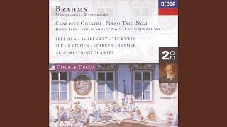 Brahms: Horn Trio in E flat, Op.40 - 3. Adagio mesto
