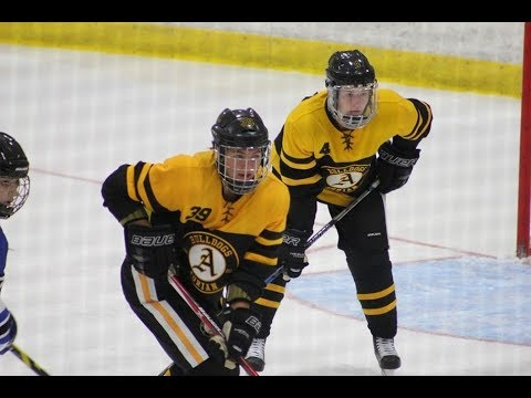 11/17/17 Adrian College Women's ACHA DI Hockey vs. Liberty
