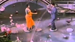 Tere Husn Ki Kya Taarif Karun-Karaoke & Lyrics-Leader