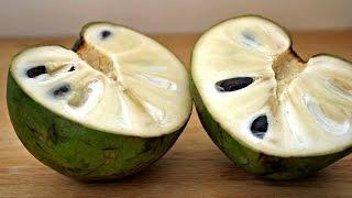 فاكهة الشيريمويا تقتل السرطان وتذيبه (باذن الله)انشر لعل الله يشفي بها مريض سرطان