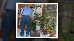 Pest Control | Fountain  Hills, AZ – Cummings Termite & Pest Control