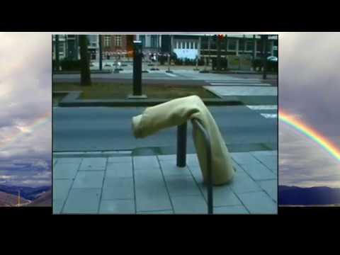 Trans Progressive 2007 Antwerp Homelessness