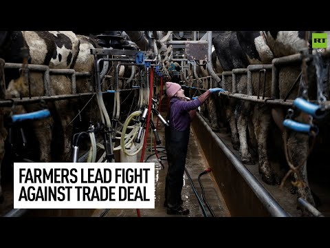 Farmers in furore over potential UK-Australia trade deal