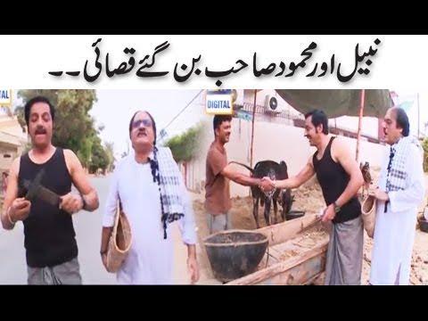 Nabeel Aur Mehmood Sahab Ban Gaye Qasaiye.. thumbnail