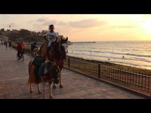 Israel Trip 2015