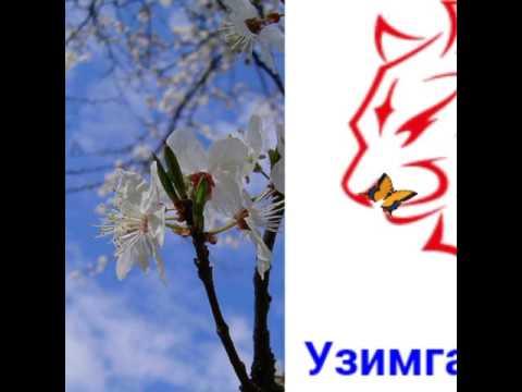 Охунжон Мадалиев ☝одмийлик улмасин