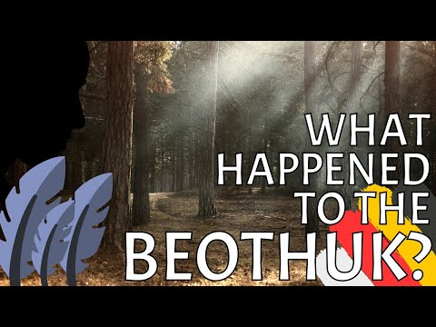The Mysterious History Of The Beothuk Indigenous Peoples In Newfoundland, Canada