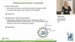 Influenssa, erikoistutkija Niina Ikonen, THL