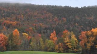 Land for sale in Vermont 8 acres