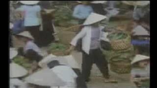 History Of Vietnam: My Lai Massacre