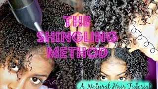 Natural Hair Tutorial: The Shingling Method  Define and stretch your curls!
